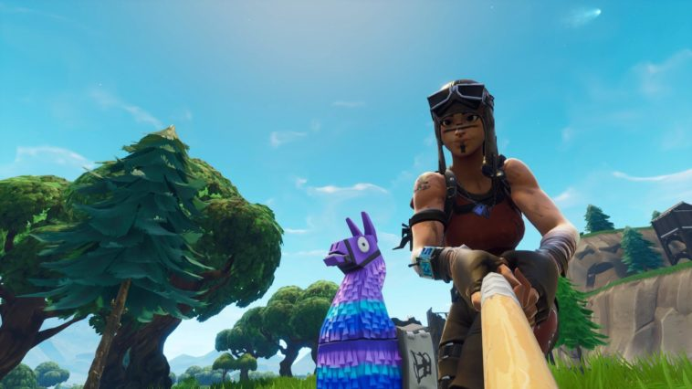 Renegade Raider Fortnite Wallpaper 2019 Mega Themes