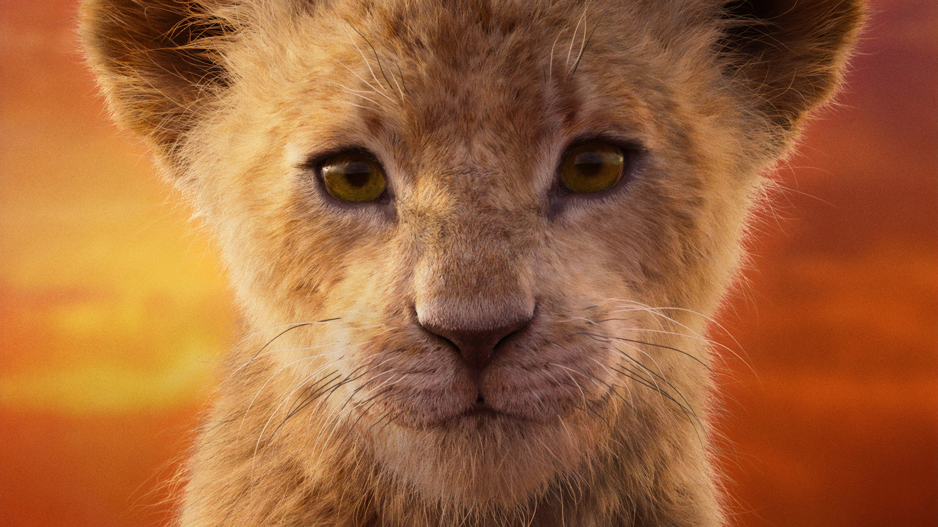 Simba The Lion King Wallpapers Details About The New Lion King Movie Mega Themes