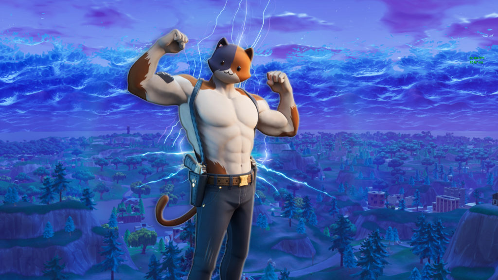 New Cat Fortnite Skin Is Here Meowscles Fortnite Wallpapers Everything You Need To Know Mega Themes